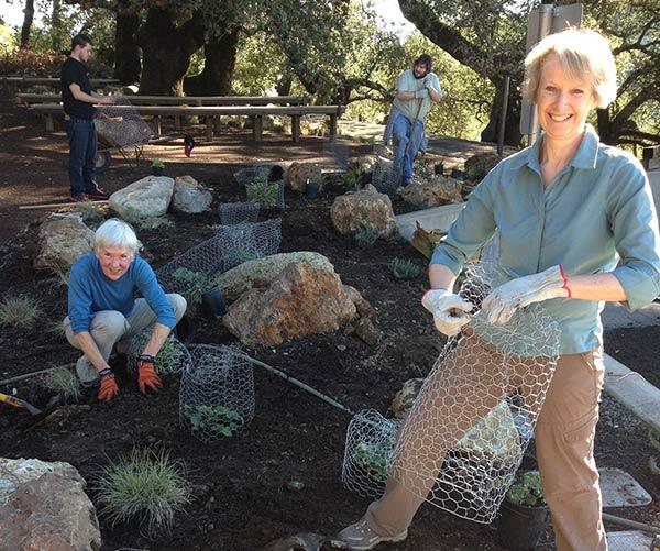 Volunteer---Demo-Garden-(Michelle-Halbur)
