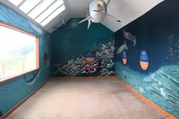 Ocean-Exploration-Center