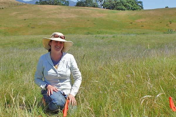 michelle-grassland-monitoring