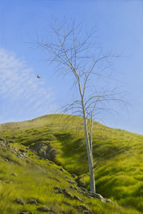 Bare Maple and Monarch Butterfly, oil on canvas painting by Sonoma County artist Christopher Evans