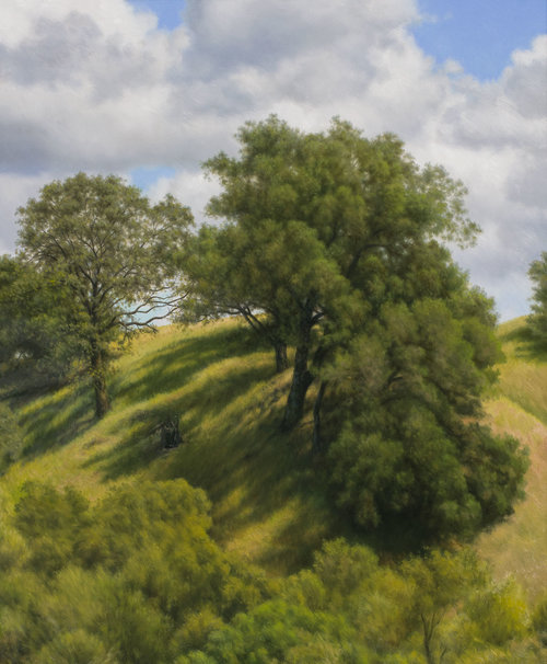 Shadows on the Shoulder of High Hill, oil on canvas painting by Sonoma County artist Christopher Evans