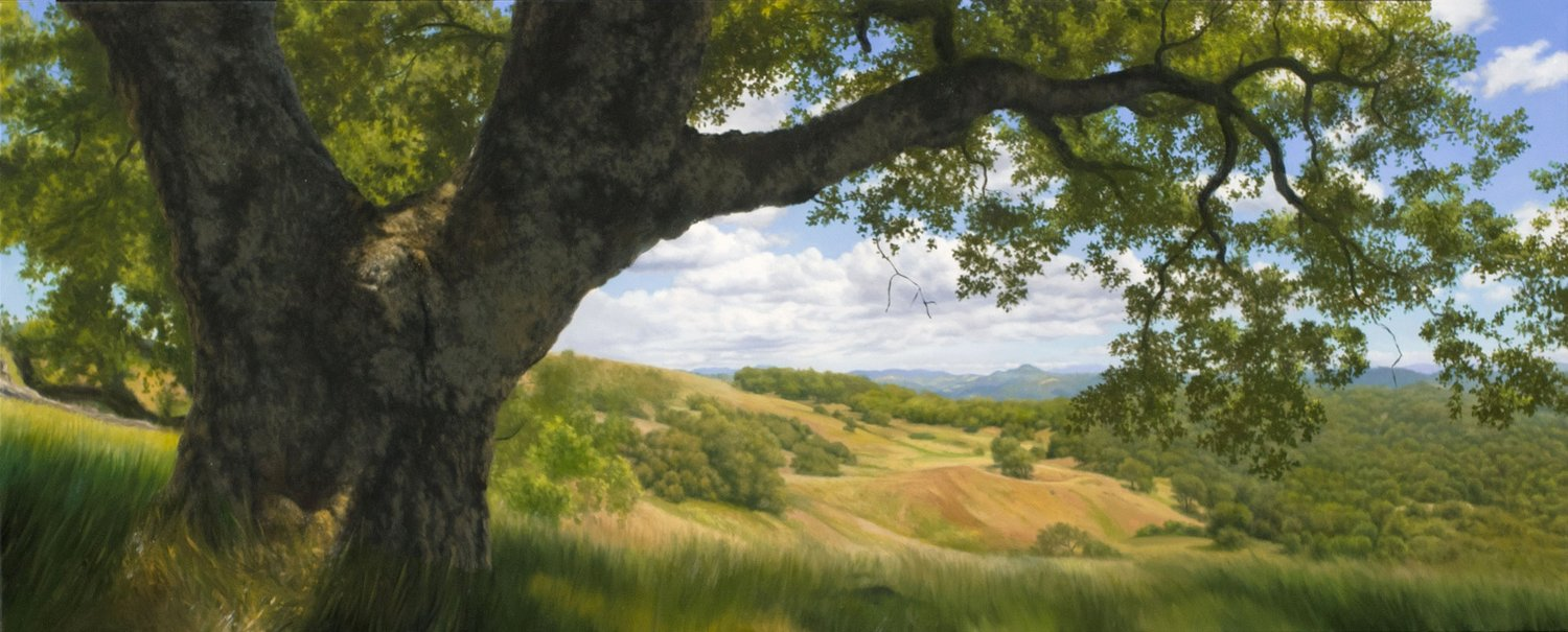 Vista Beneath an Ancient Oak, oil on canvas painting by Sonoma County artist Christopher Evans