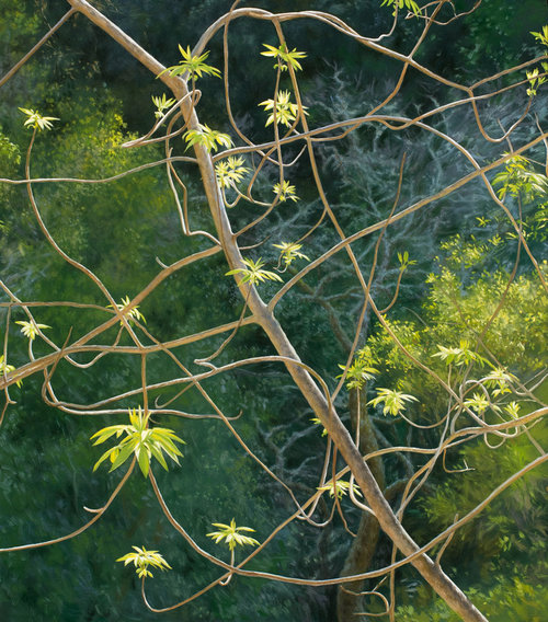 Buckeye Leaves and Branches, oil on canvas painting by Sonoma County artist Christopher Evans