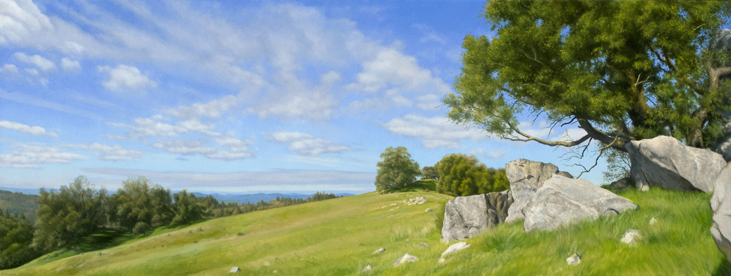 Meadow, Rocks and Pepperwood Tree, oil on canvas painting by Sonoma County artist Christopher Evans