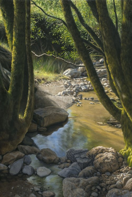 Stream in Sunlight, oil on canvas painting by Sonoma County artist Christopher Evans