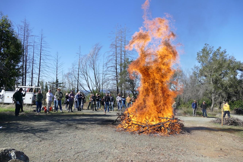20-02-29 Pile Burning Workshop_37