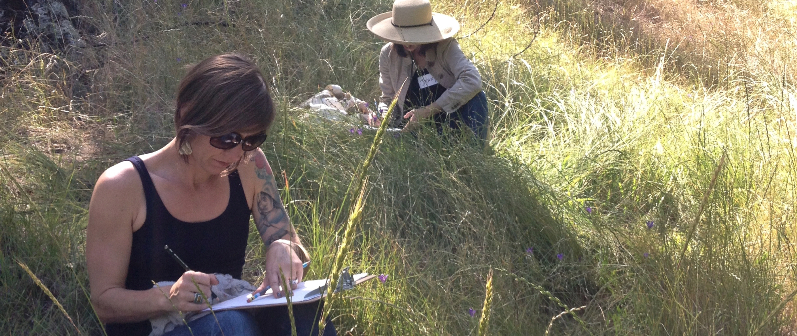 Nature Journaling at Pepperwood Preserve