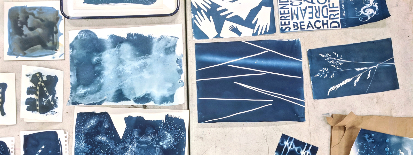 Cyanotype Workshop at Pepperwood Preserve