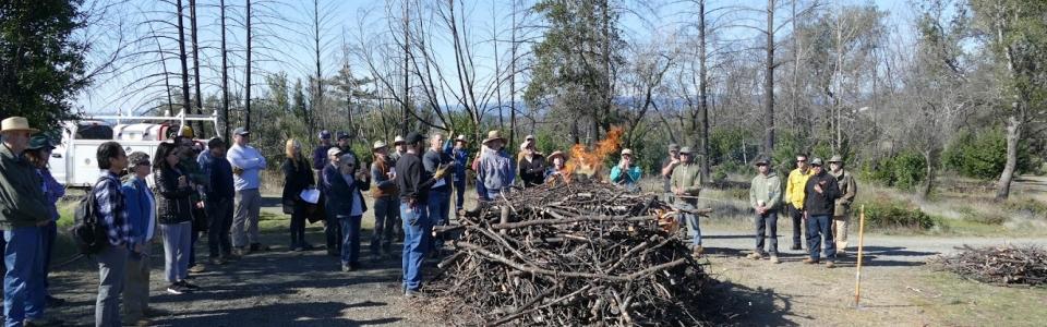 20-02-29 Pile Burning Workshop_1